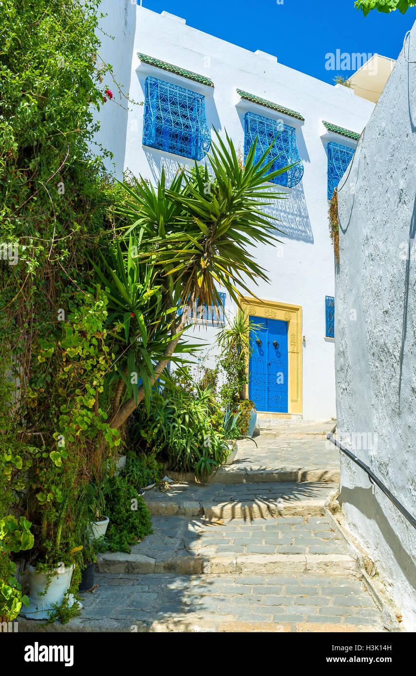 Las estrechas calles de Sidi Bou Said consisten de hermosas casas blancas y exuberantes jardines tropicales, Túnez. Imagen De Stock