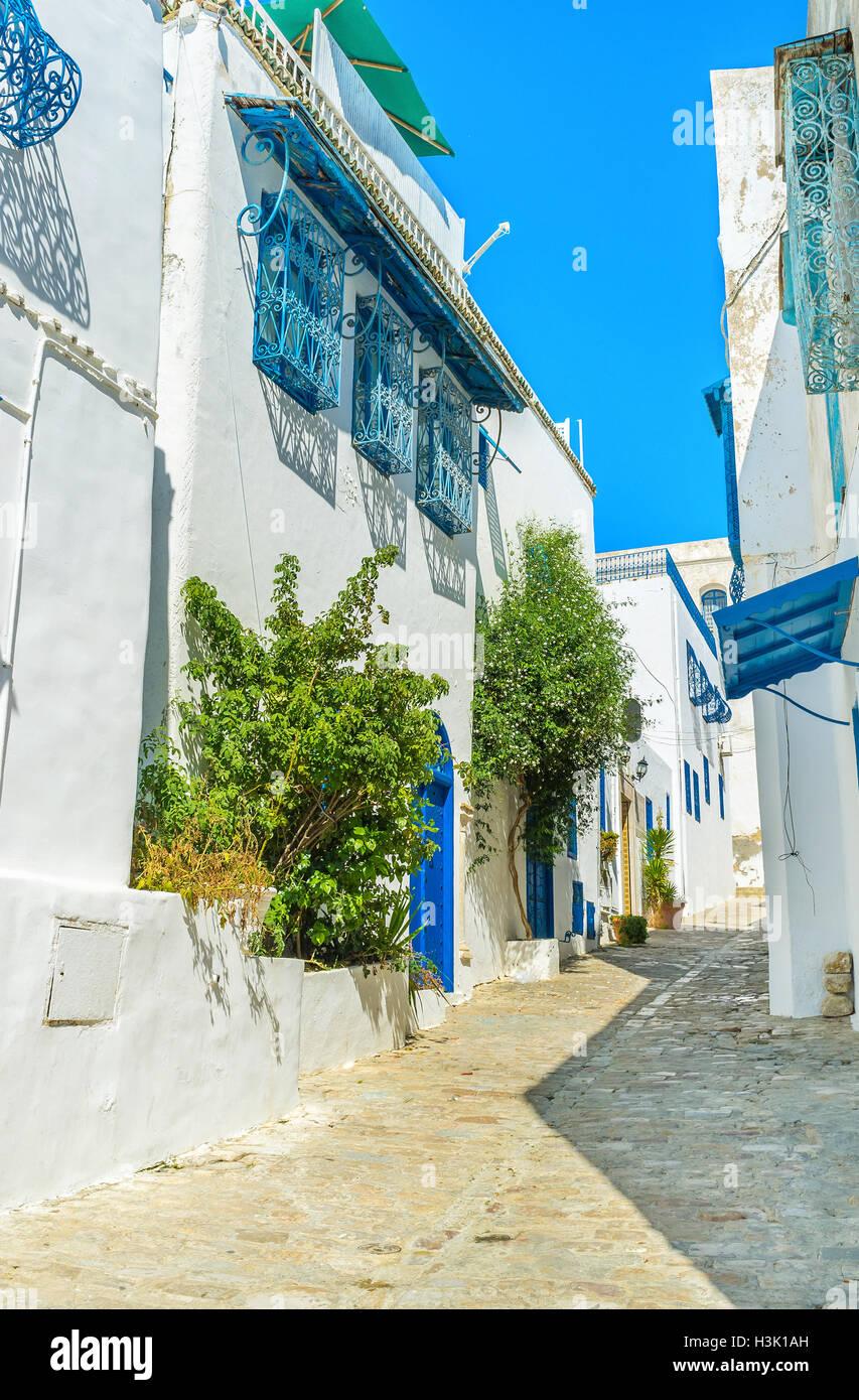 Las calles estrechas y pequeños parques de Sidi Bou Said están casi vacías a mediodía, los turistas Imagen De Stock