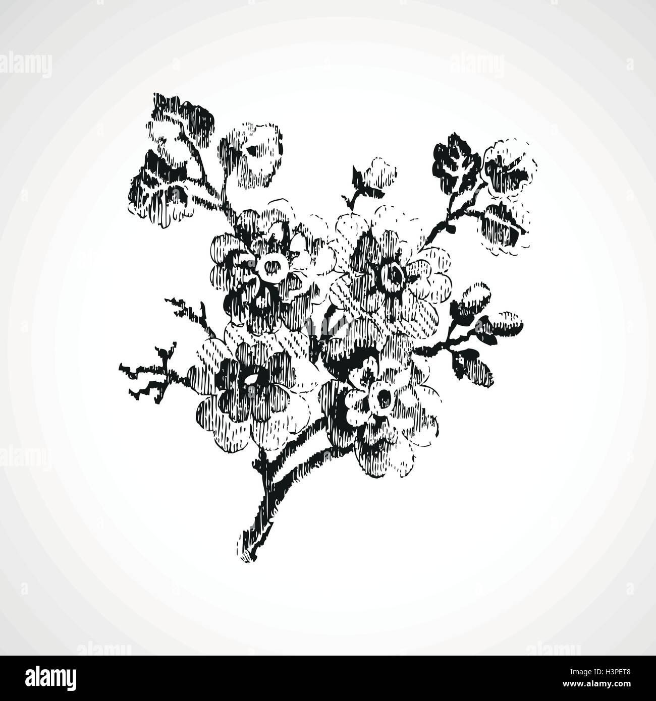 Ramita Dibujados A Mano Con Flores Vintage Antecedentes Aislados