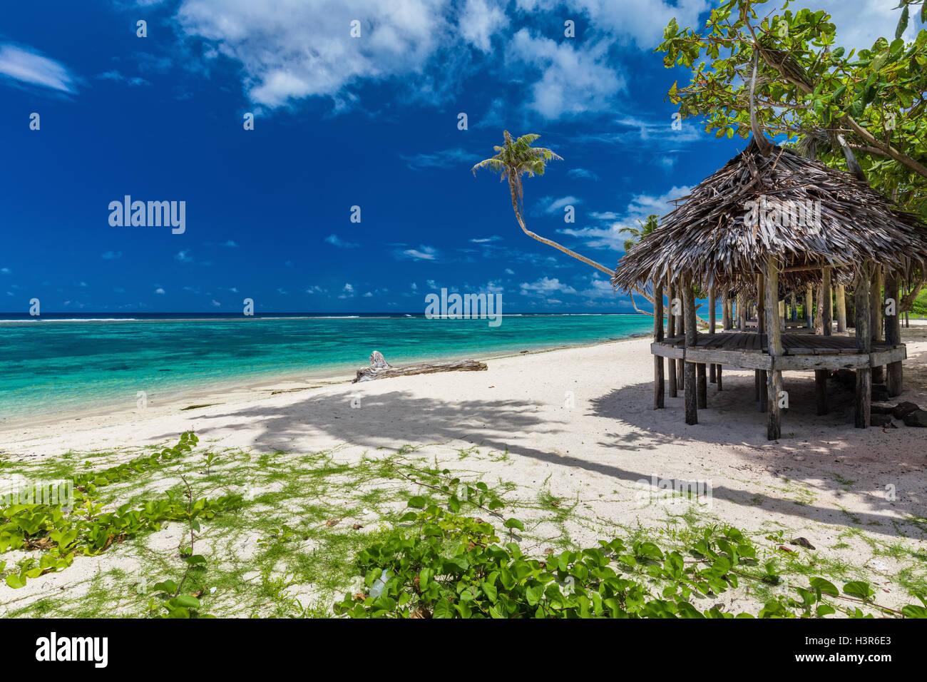 Vibrante tropical playa natural de la isla de Samoa con palmera y fale Imagen De Stock
