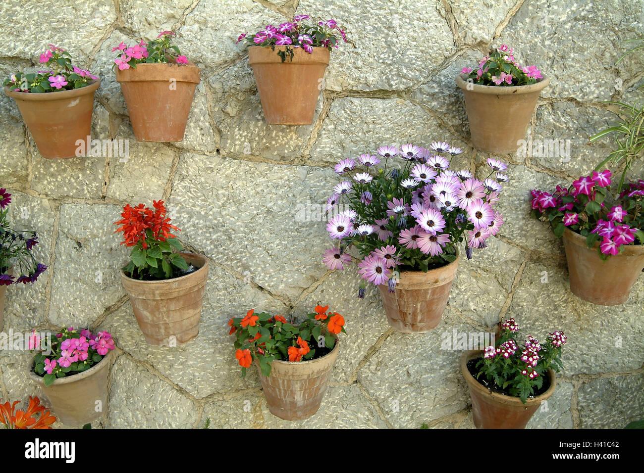 Muralla De Piedra Natural Macetas Flores Diferentemente