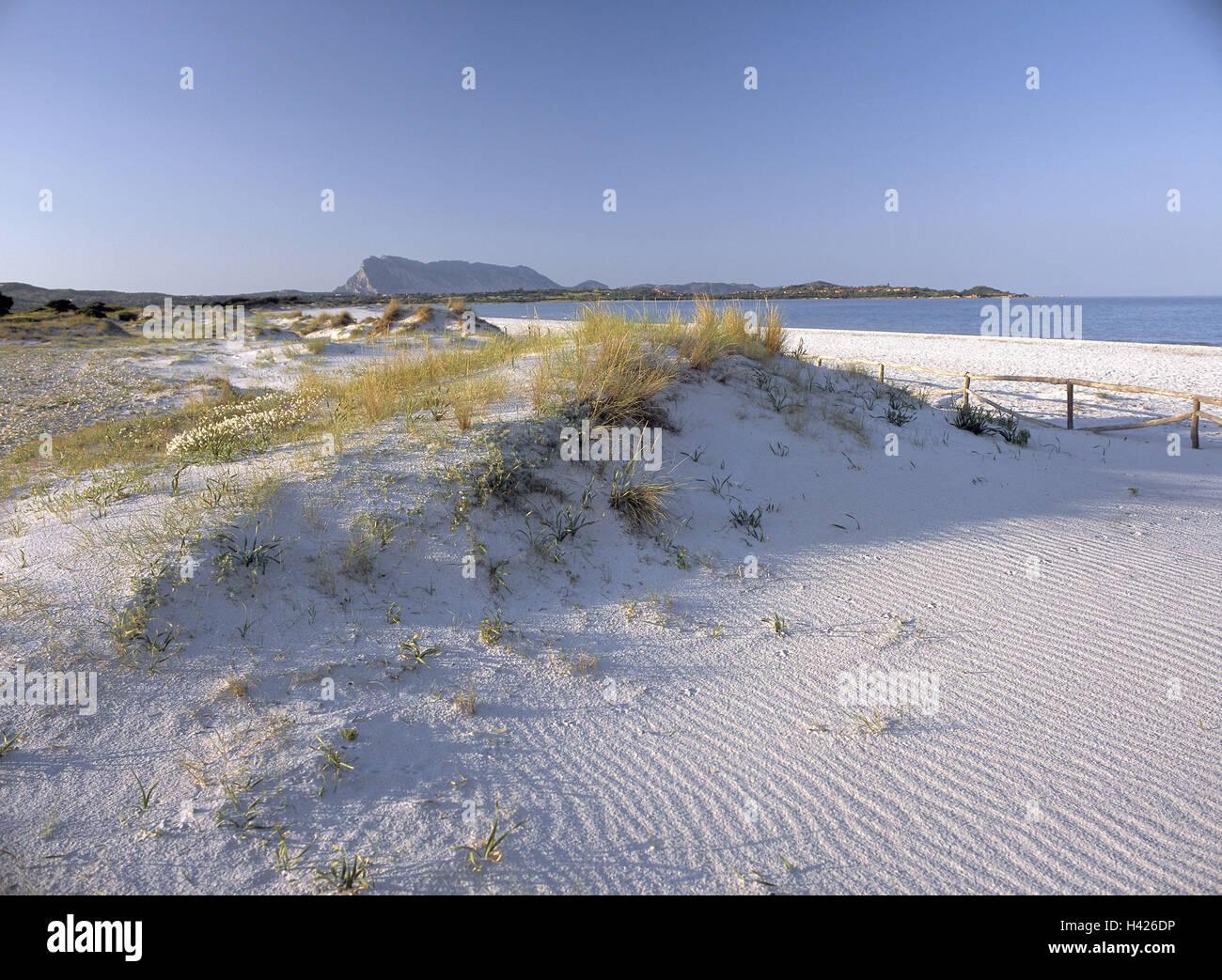 Italia, Cerdeña, San Teodoro, playa de arena, Europa, el Mediterráneo, la isla, al norte-este de la isla, región Foto de stock