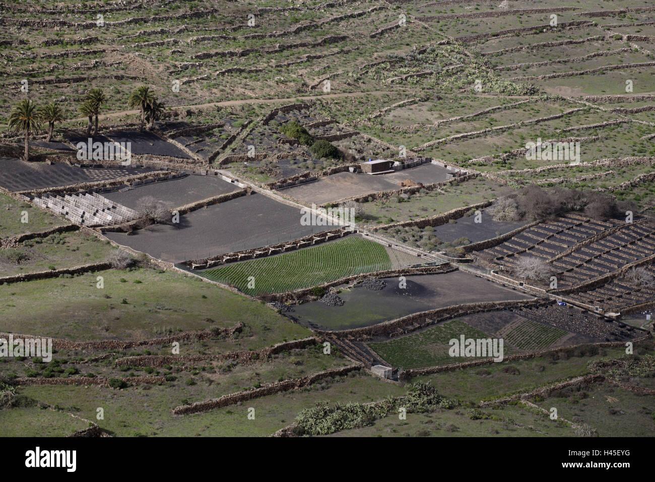 En España Las Islas Canarias Lanzarote Haria Terraza De