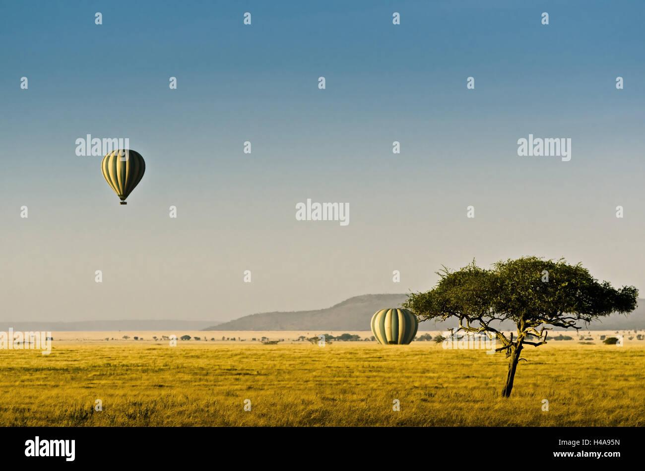 Africa, Tanzania, África Oriental, el parque nacional de Serengeti, globo, globo aerostático, viaje en Imagen De Stock