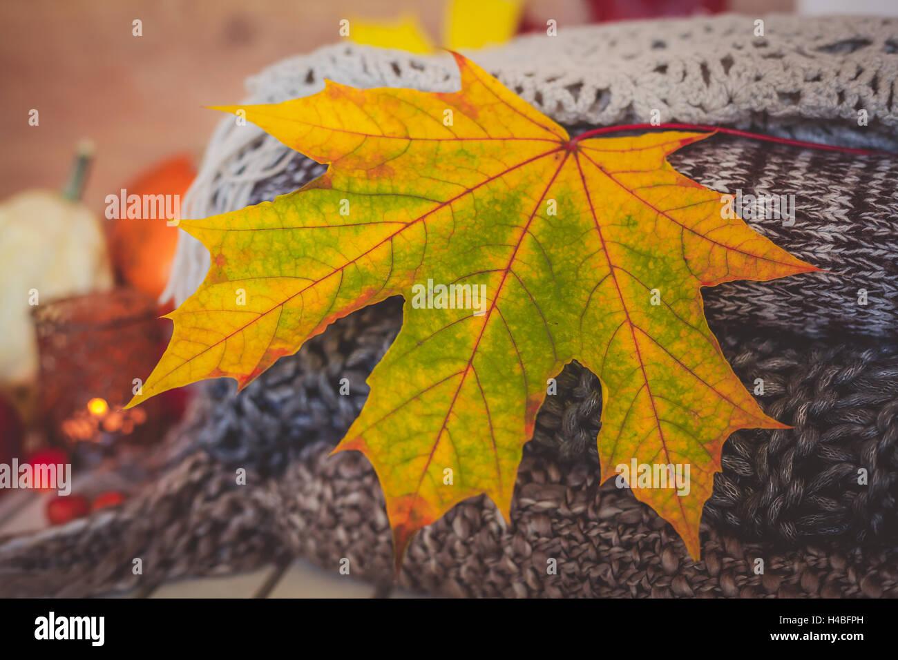 Bodegn otoo decoracin con hojas secas de color amarillo de lana