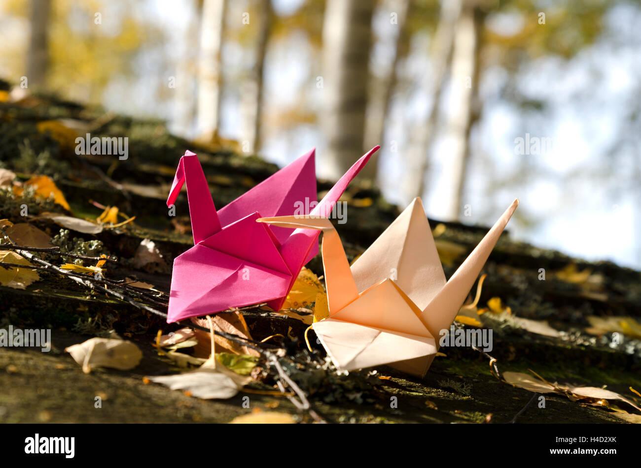 Dos grullas de origami en la naturaleza Imagen De Stock