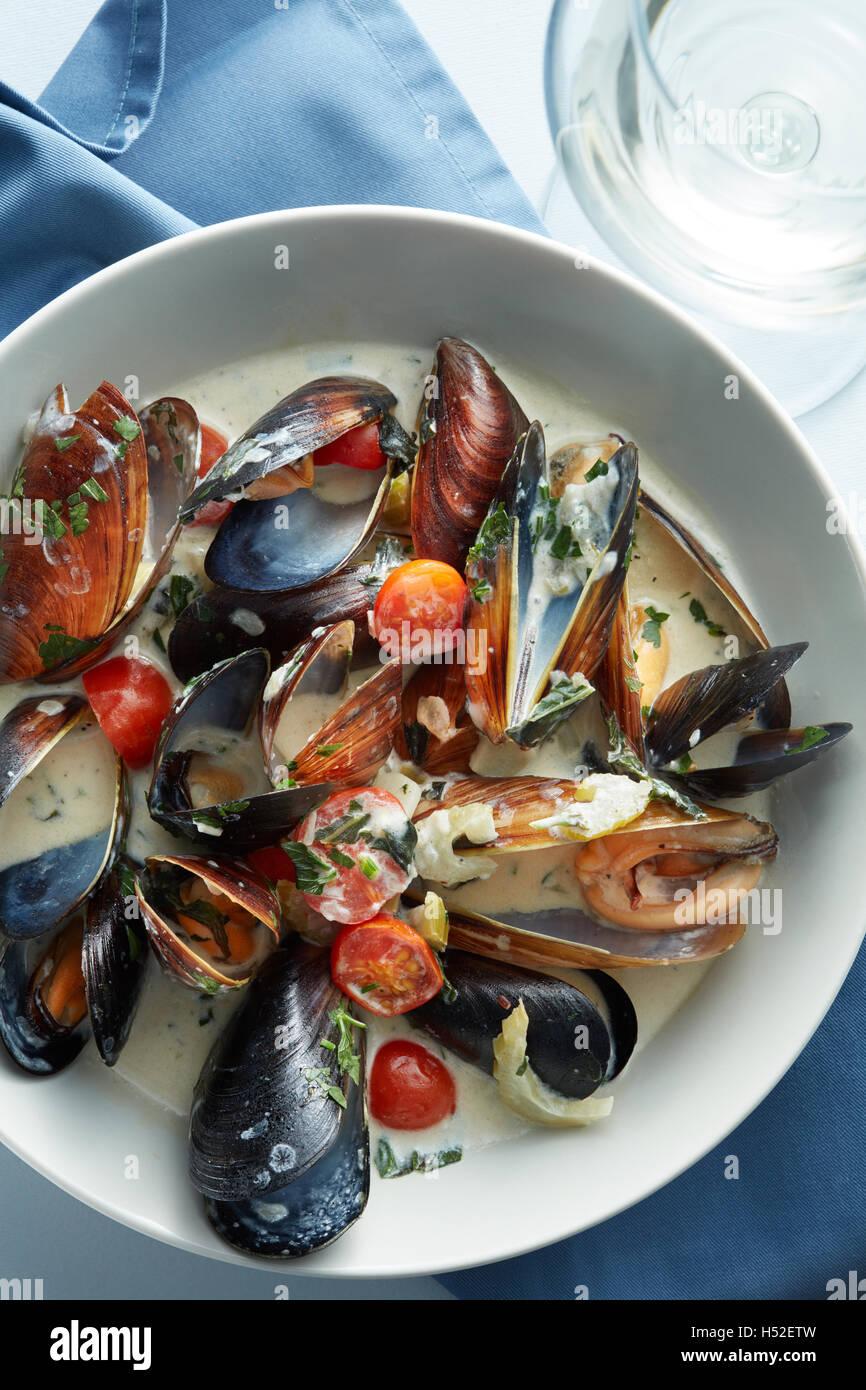 Cocer los mejillones en salsa de vino blanco Foto de stock