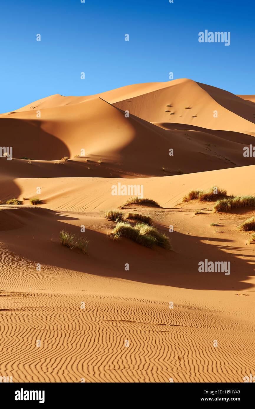 Sahara dunas de Erg Chebbi, Merzouga Marruecos, África Foto de stock