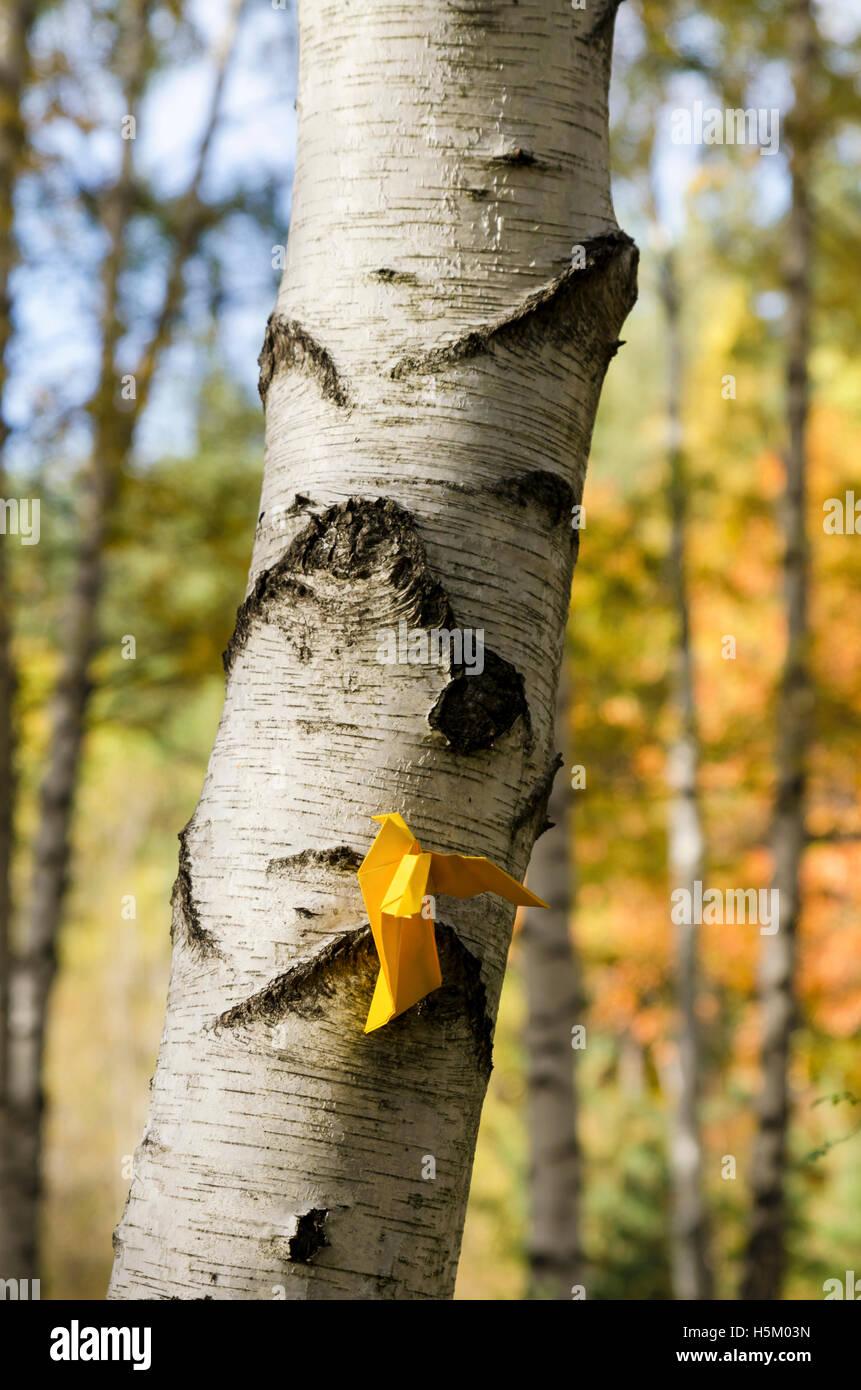 Papel amarillo pájaro sobre el abedul. Disparo vertical Imagen De Stock