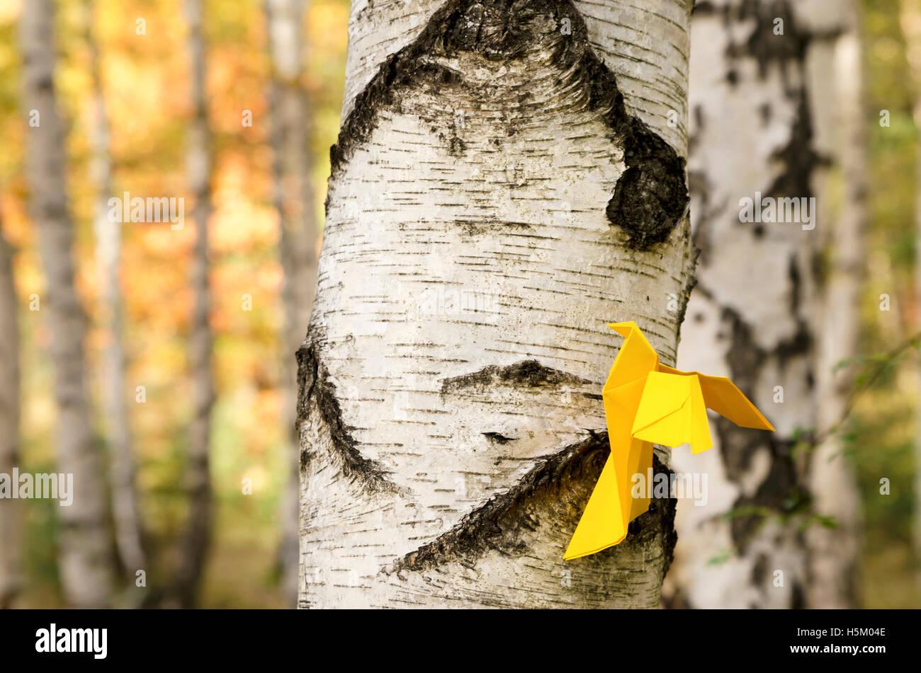 Papel amarillo pájaro sobre el abedul Imagen De Stock