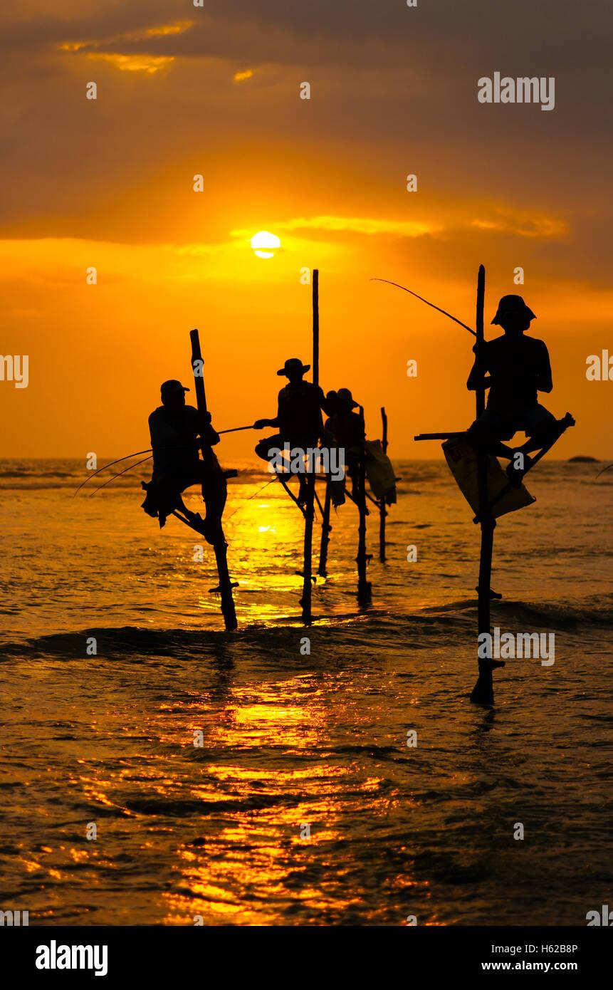 Las siluetas de los pescadores tradicionales al atardecer en Sri Lanka Foto de stock