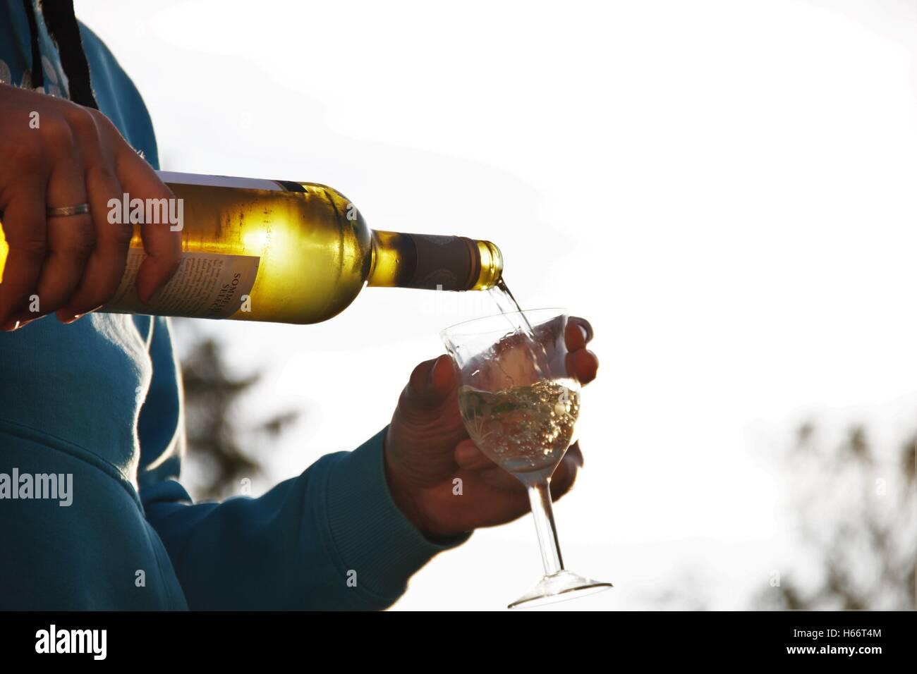 Verter el vino Imagen De Stock