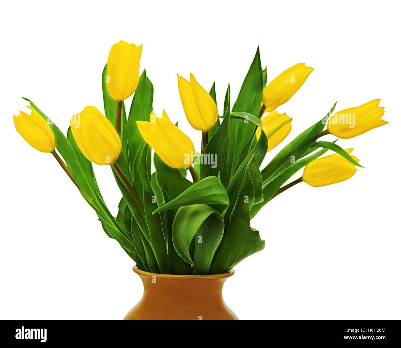 Ramo De Flores De Tulipanes Amarillos En Jarron Marron Aislado Sobre
