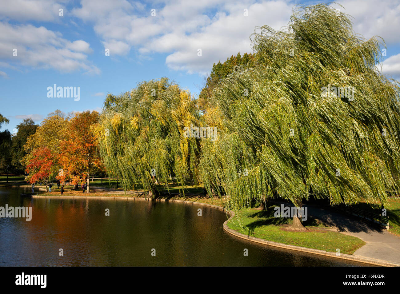 Boston Public Garden Imagen De Stock