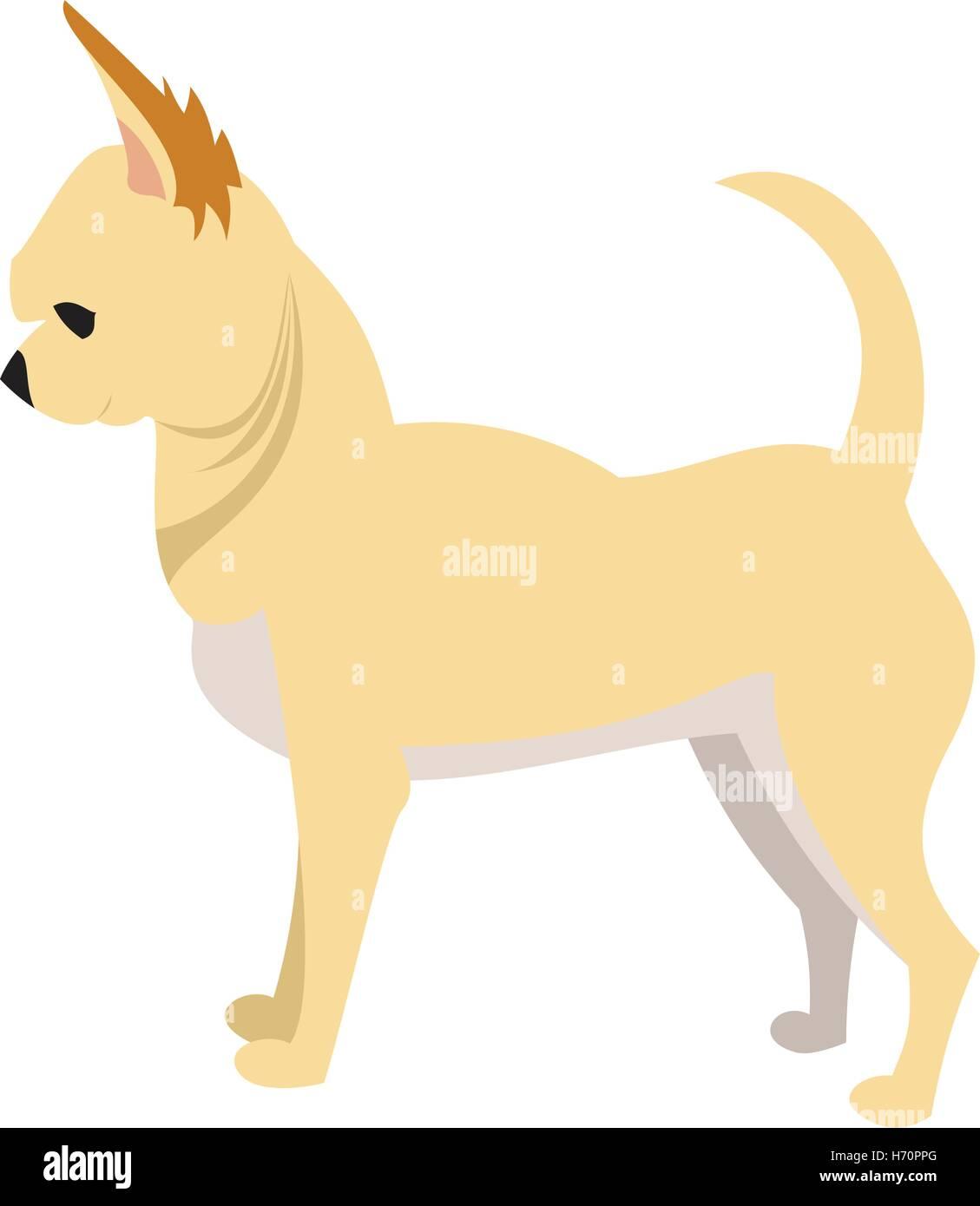 Chihuahua Vector Vectors Imágenes De Stock Chihuahua Vector
