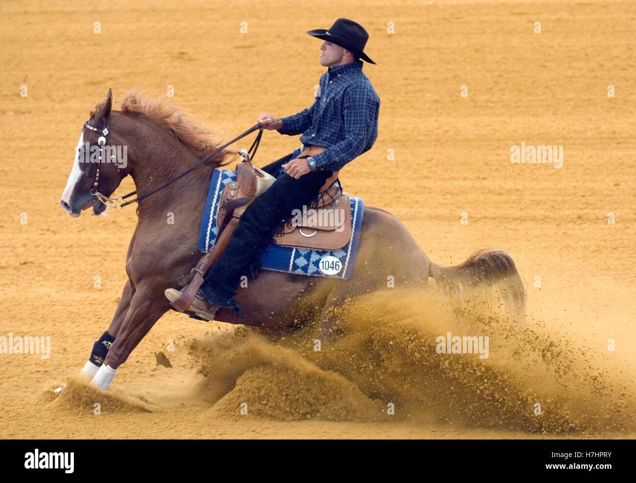 Reining, Shal Kaneti, Israel, en volantes de Remedy, Juegos Ecuestres Mundiales de 2006 en Aquisgrán, Renania del Norte-Westfalia Foto de stock