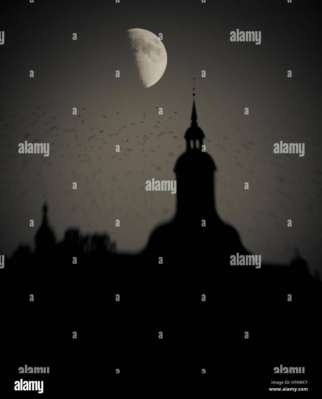 Bandada de aves volando pasado edificio de noche con media luna en el fondo. Oscuro, Moody y espeluznante con la Foto de stock