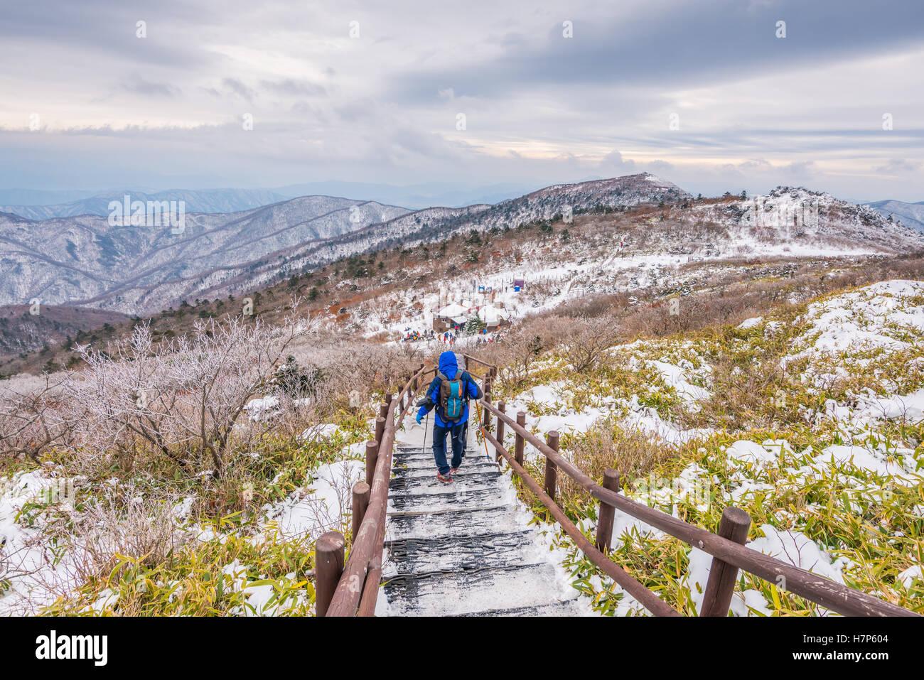 Los excursionistas en montañas en invierno,paisaje invernal de la montaña de nieve blanca en Corea Foto de stock
