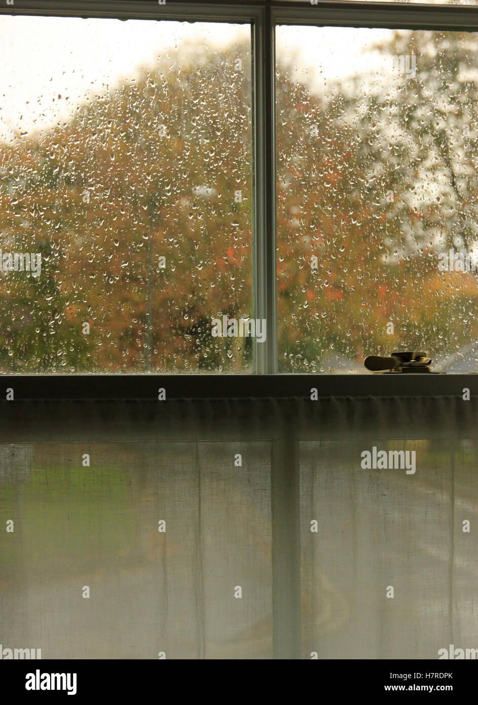Inglés británico clima lluvioso día de otoño vistos a través de la ventana de guillotina de Georgia en el mercado Foto de stock