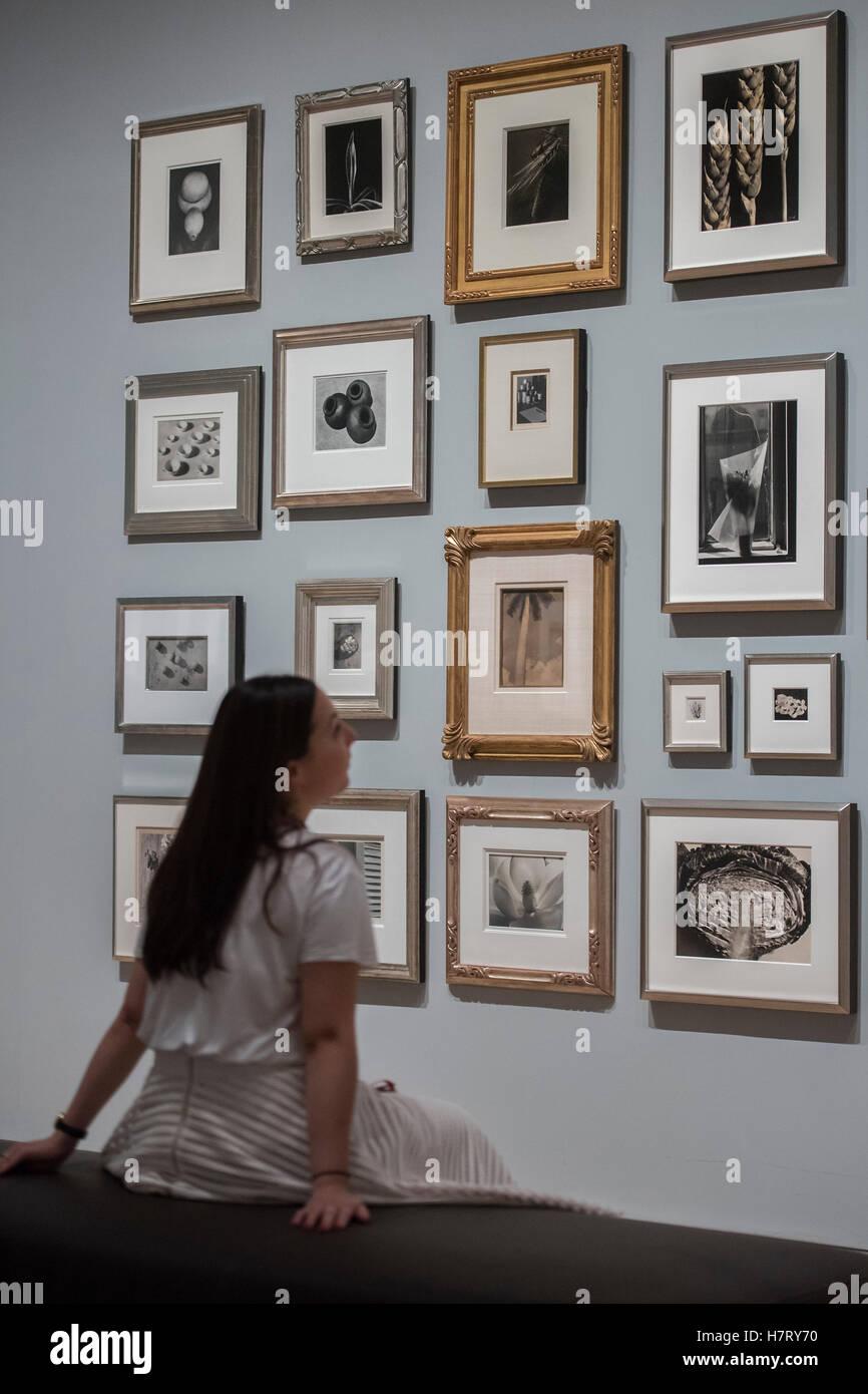 Londres, Reino Unido. 8 nov, 2016. Un muro mixto de still life imagenes - El Ojo radical: Fotografía modernista Foto de stock