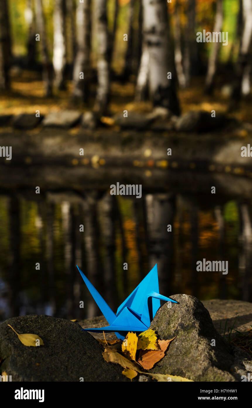 Blue Crane y reflejos de agua Imagen De Stock