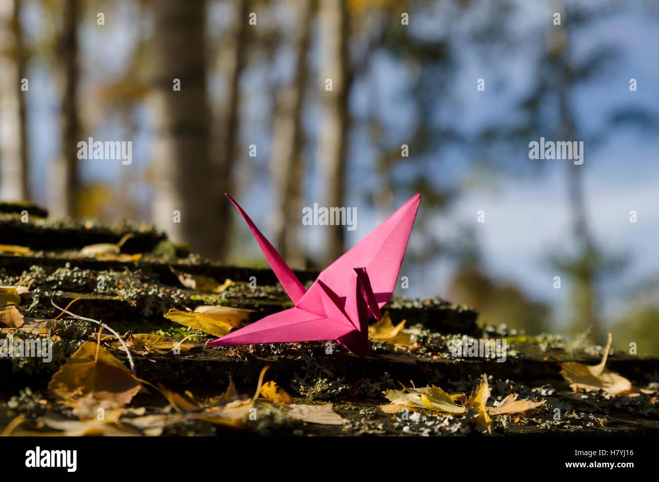 Grúa rosa en madera Imagen De Stock