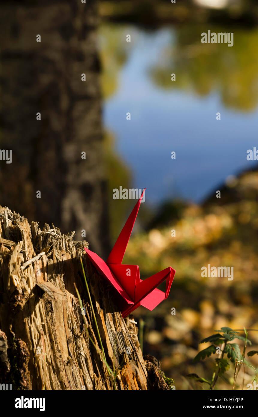 Grúa roja Imagen De Stock