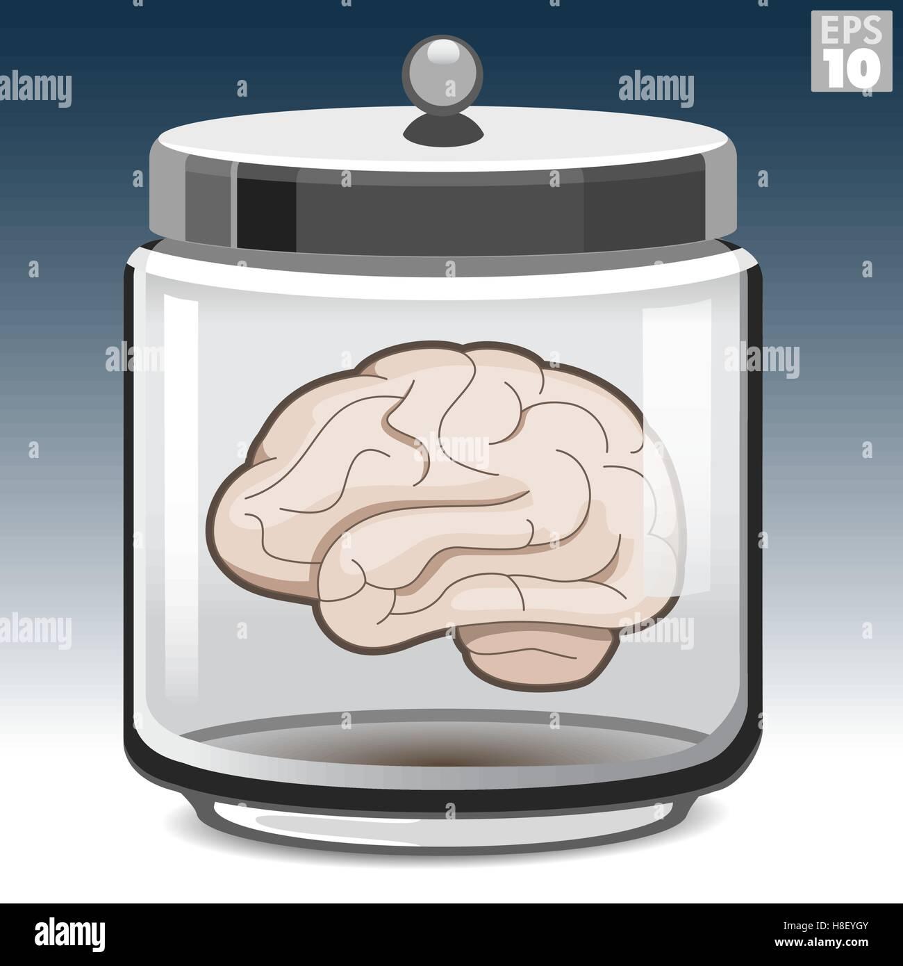 Cerebro Humano en un frasco de vidrio Imagen De Stock