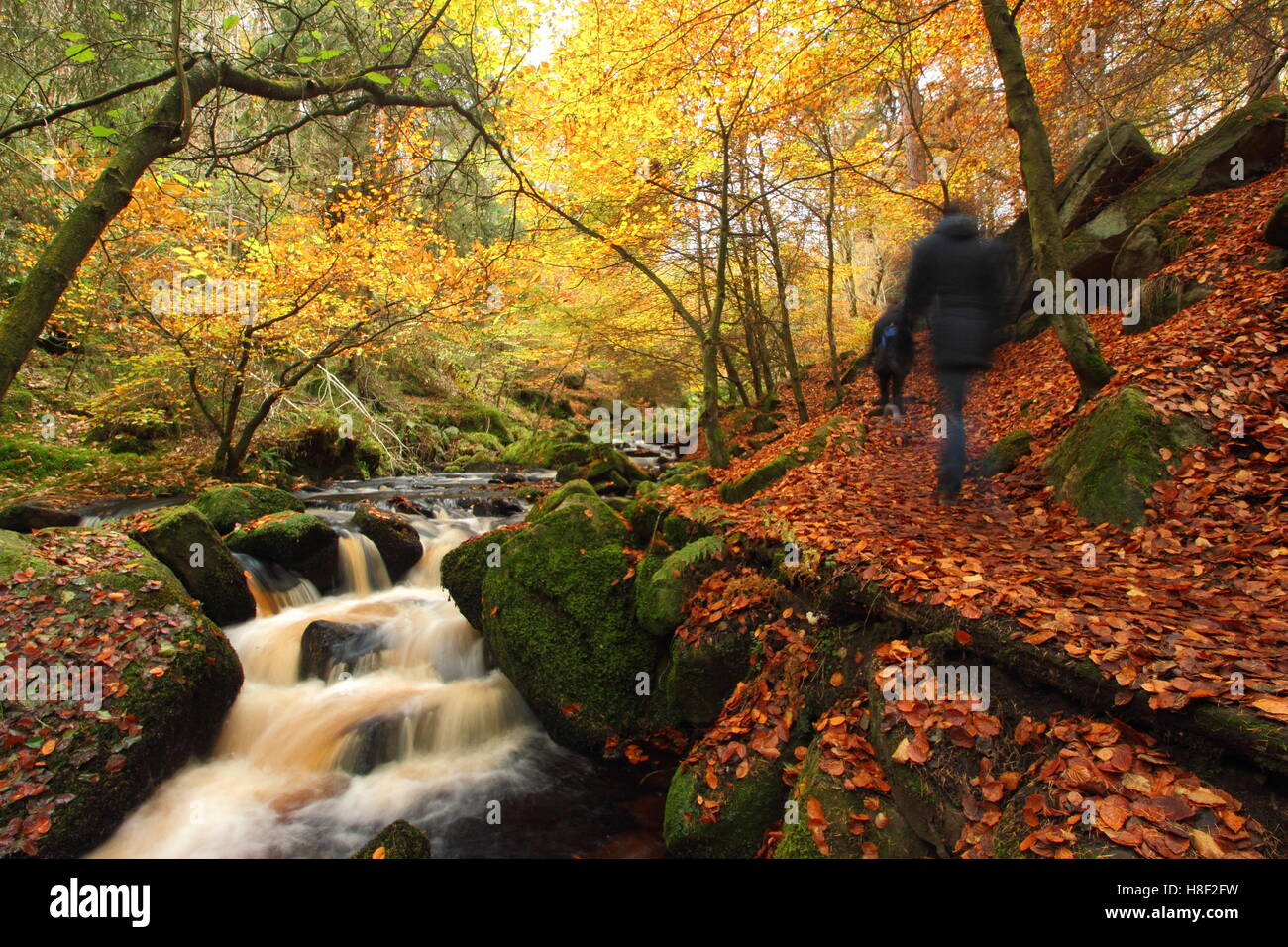 Caminantes en una acera pública por Wyming Brook en el Peak District National Park, Sheffield, South Yorkshire, Foto de stock