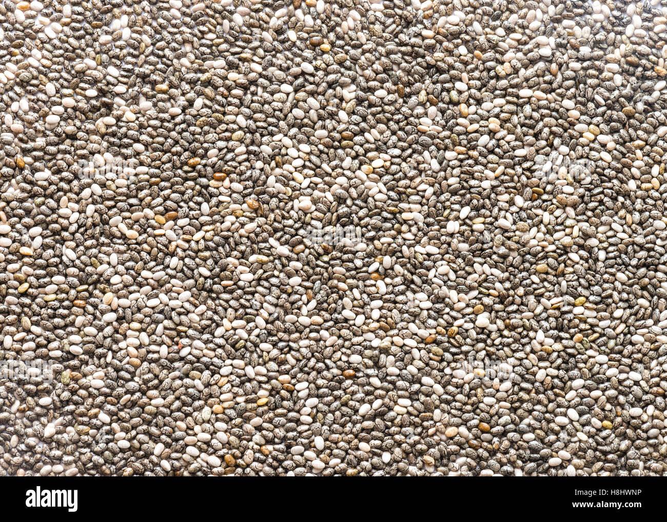 Chia semillas cerrar rellena el marco ideal para alimentos o texturas de fondo Imagen De Stock