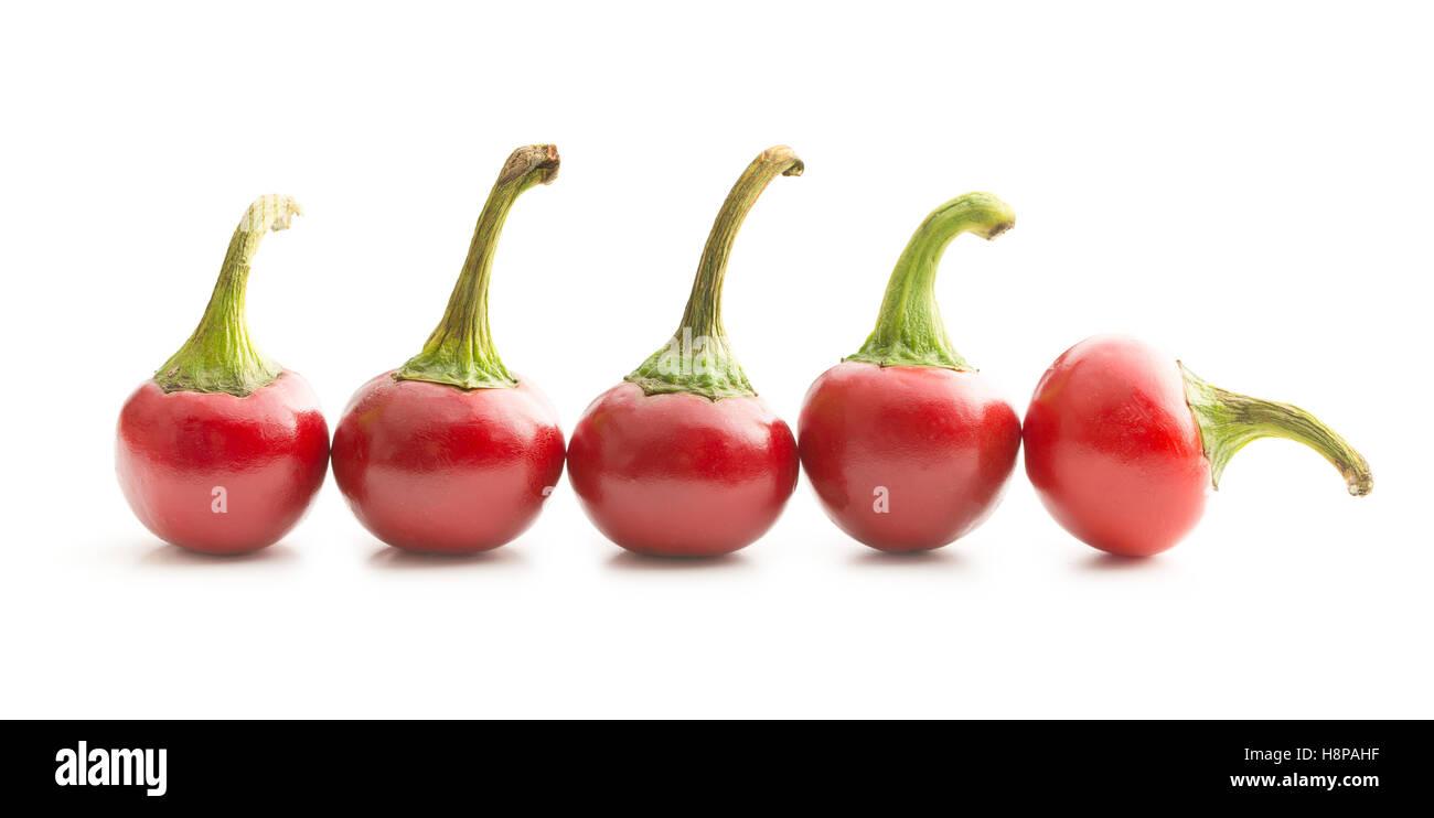 Chili Peppers redondo aislado sobre fondo blanco. Foto de stock