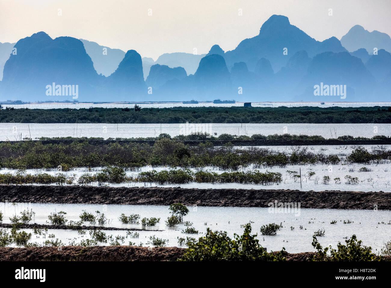 Granja de perlas en la Bahía de Halong, Vietnam, Indochina, Asia Foto de stock