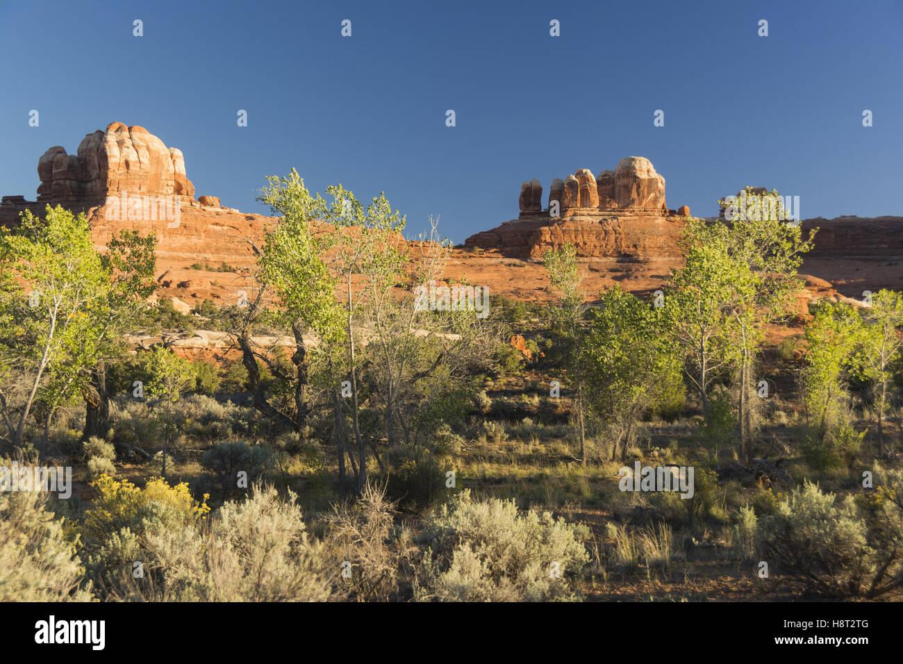 Utah Canyonlands National Park, el distrito de las agujas, Squaw área plana horizontal Imagen De Stock
