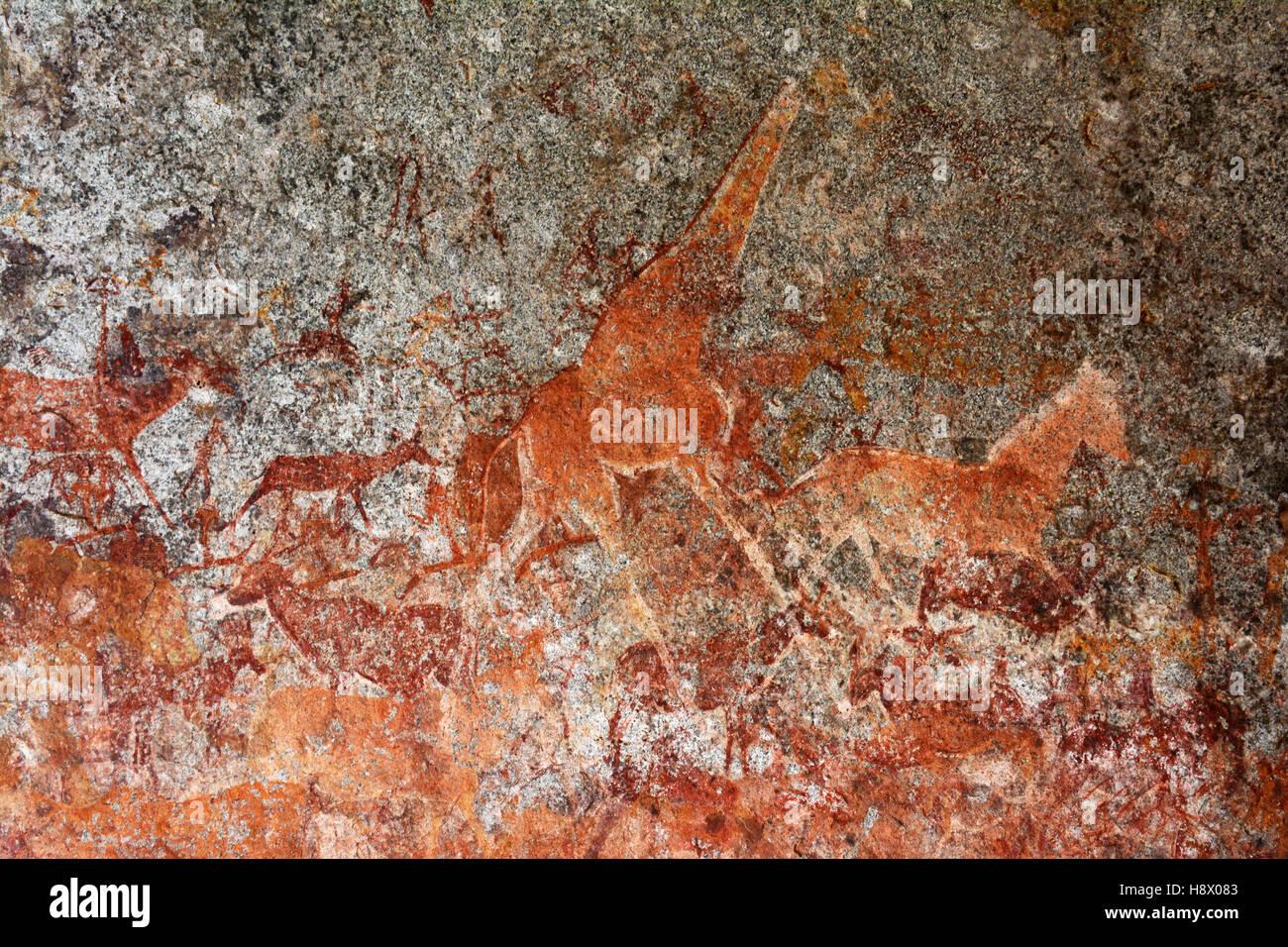 San pinturas rupestres - Cueva Nswatugi Matobos Zimbabwe Imagen De Stock