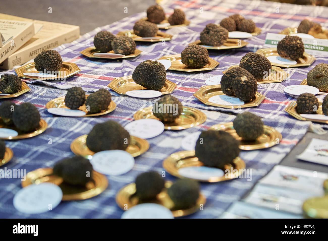 Trufas negras en venta durante la Feria de la trufa blanca de Alba en Alba, Italia Foto de stock