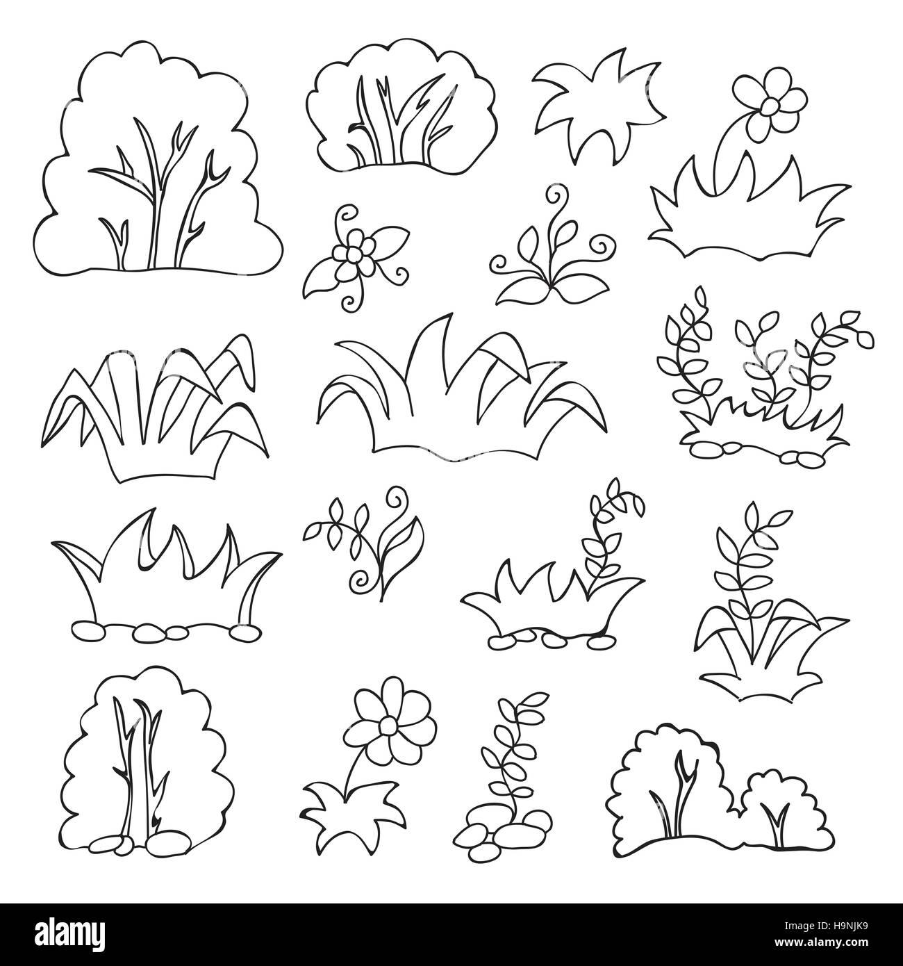 Libro Para Colorear Para Los Niños Pasto Y Flores Conjunto De