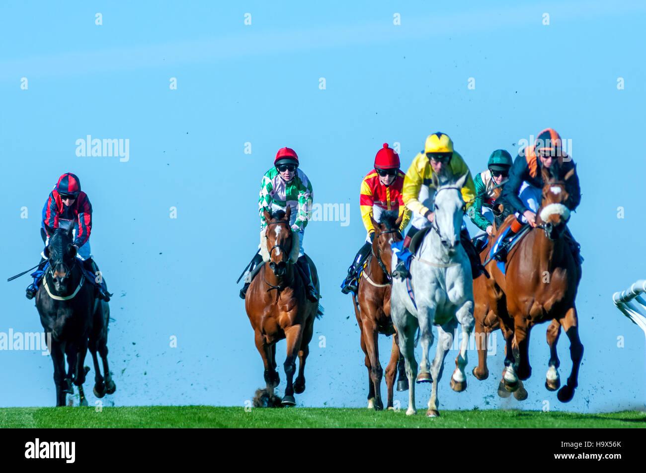 Carreras de caballos en el Hipódromo de Brighton Imagen De Stock