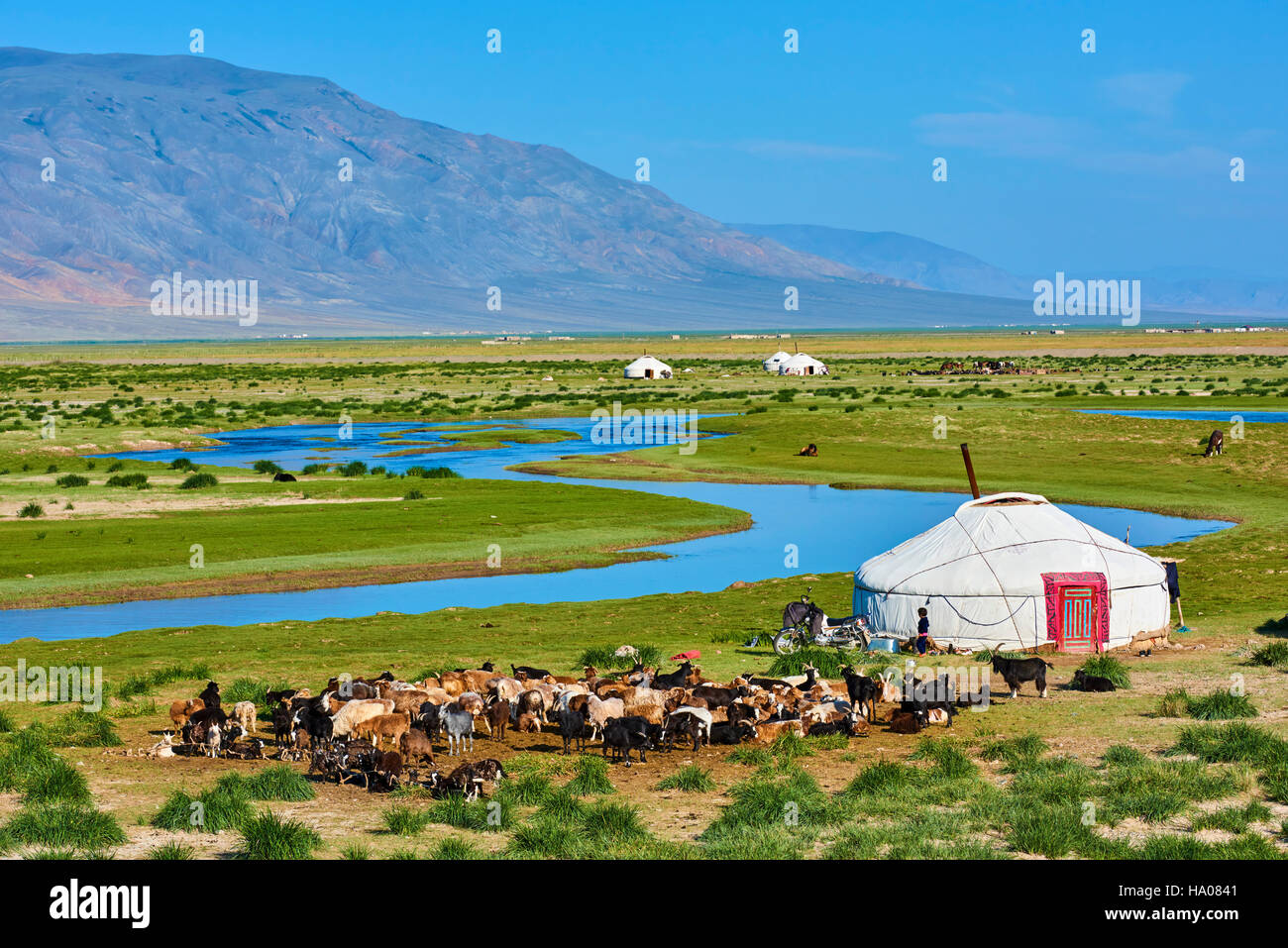 Mongolia, Bayan-Ulgii provincia, oeste de Mongolia, campamento nómada del pueblo kazajo en la estepa Foto de stock