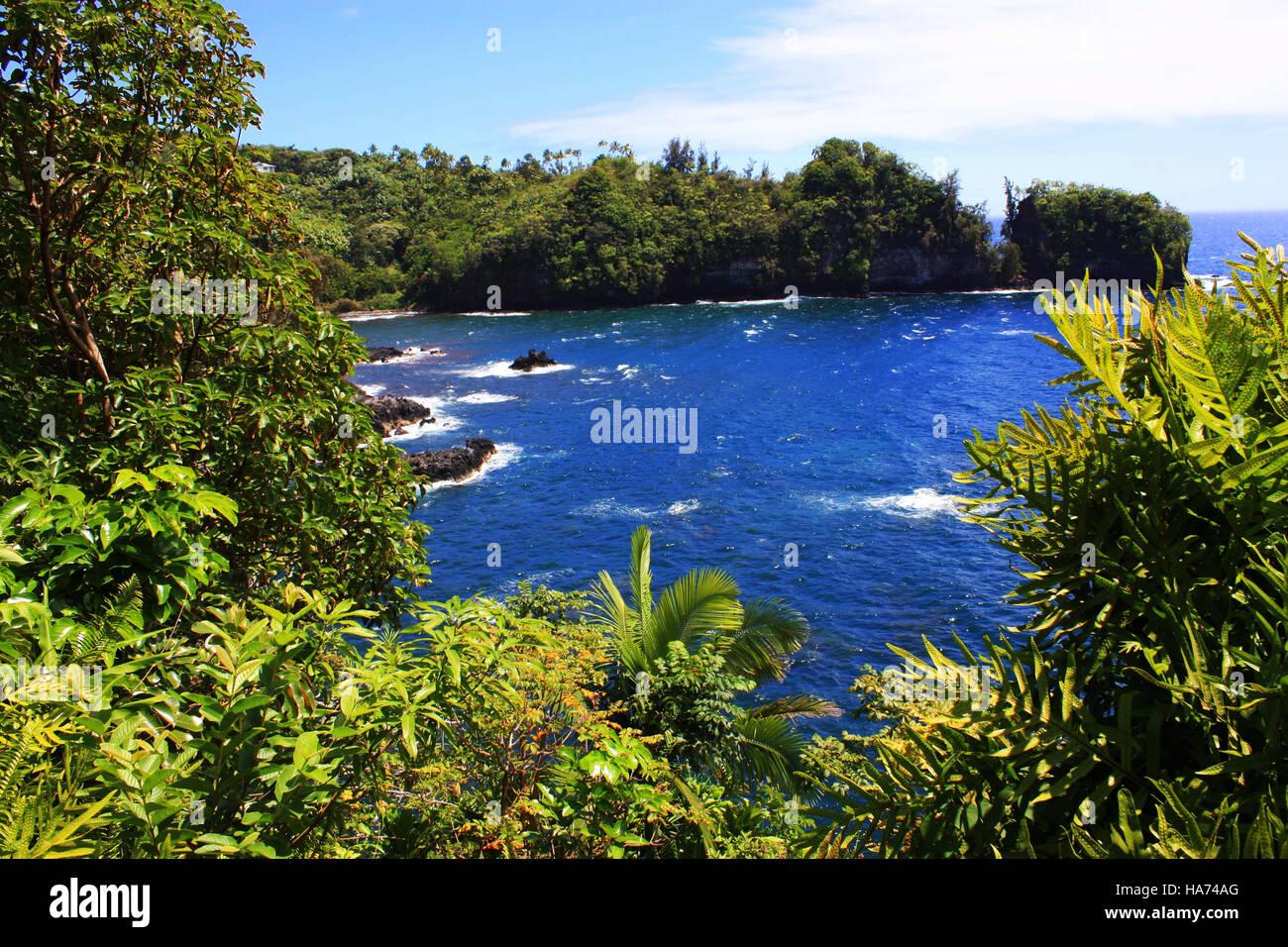 Vista de la Bahía Onomea en la parte superior de burro Trail en Papaikou, Hawaii, EE.UU. Foto de stock