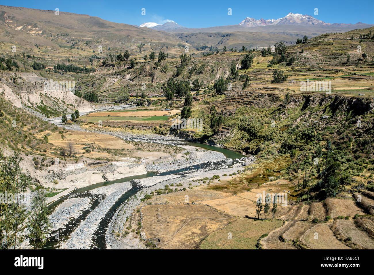Río Colca Terrazas Agrícolas Y El Nevado Hualca Hualca