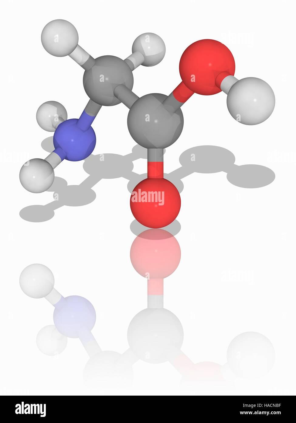 Glicina Modelo Molecular De Los Aminoácidos Glicina C2 H5