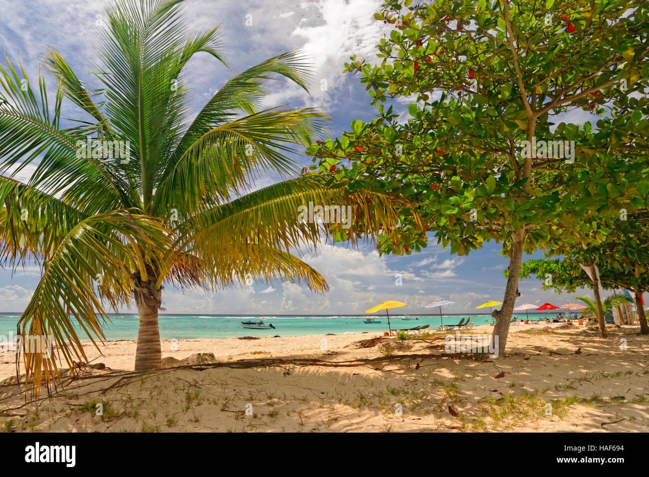 Worthing Beach en Worthing, entre St. Lawrence Gap y a Bridgetown, Barbados, el Caribe. Imagen De Stock