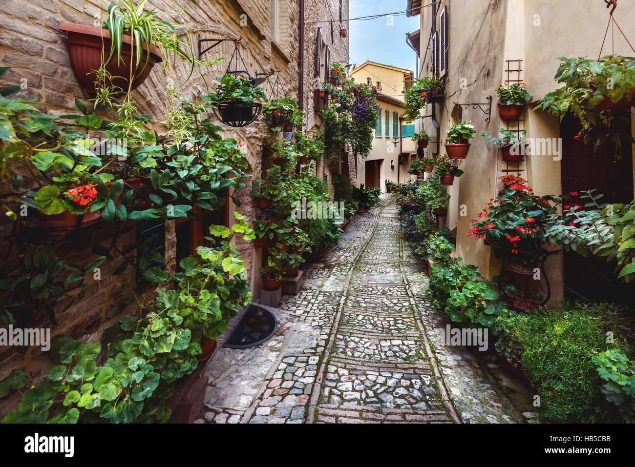 Sorprendente apariencia de calles llenas de flores de Spello, en Umbría. Imagen De Stock