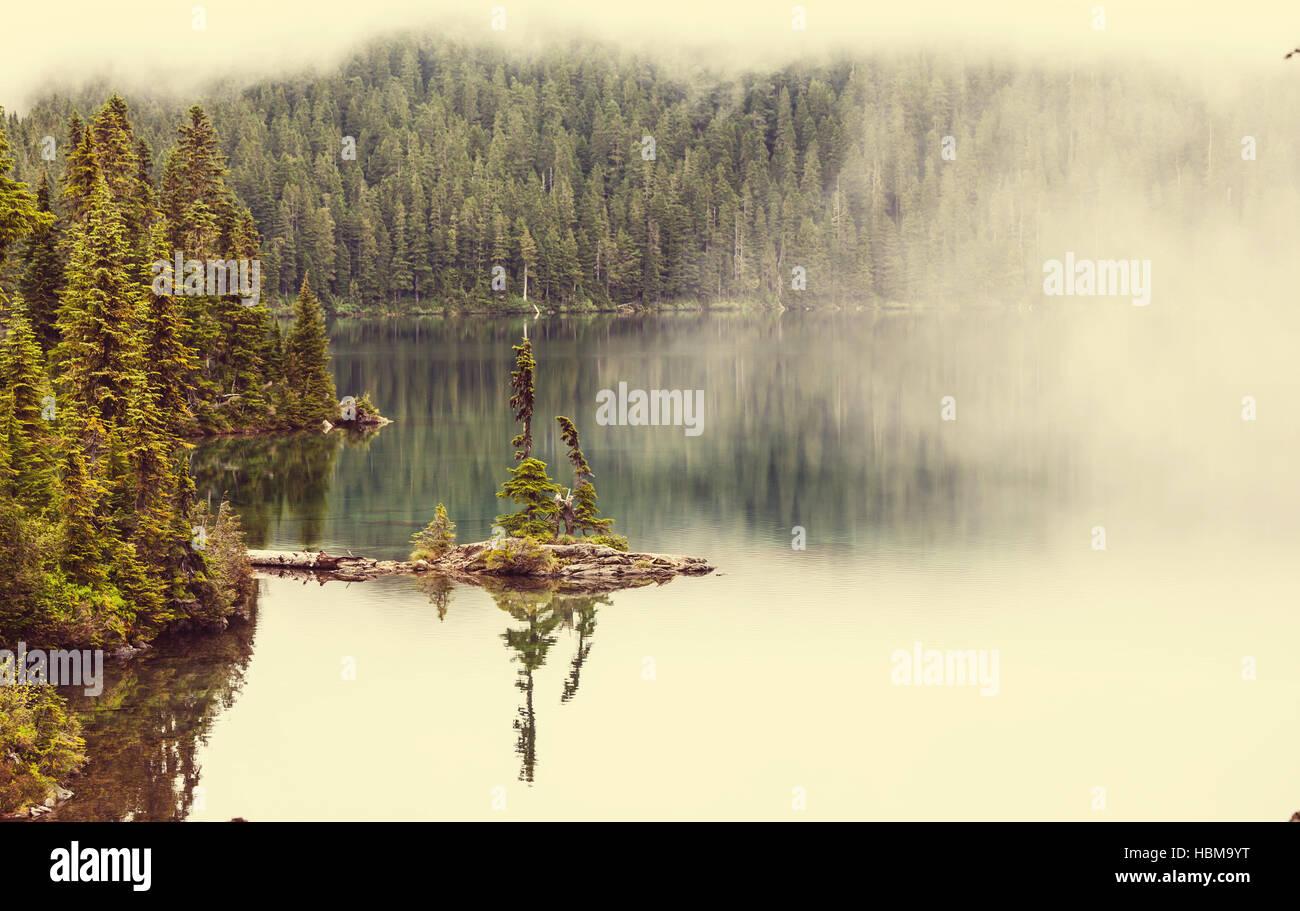 Niebla en el lago Imagen De Stock
