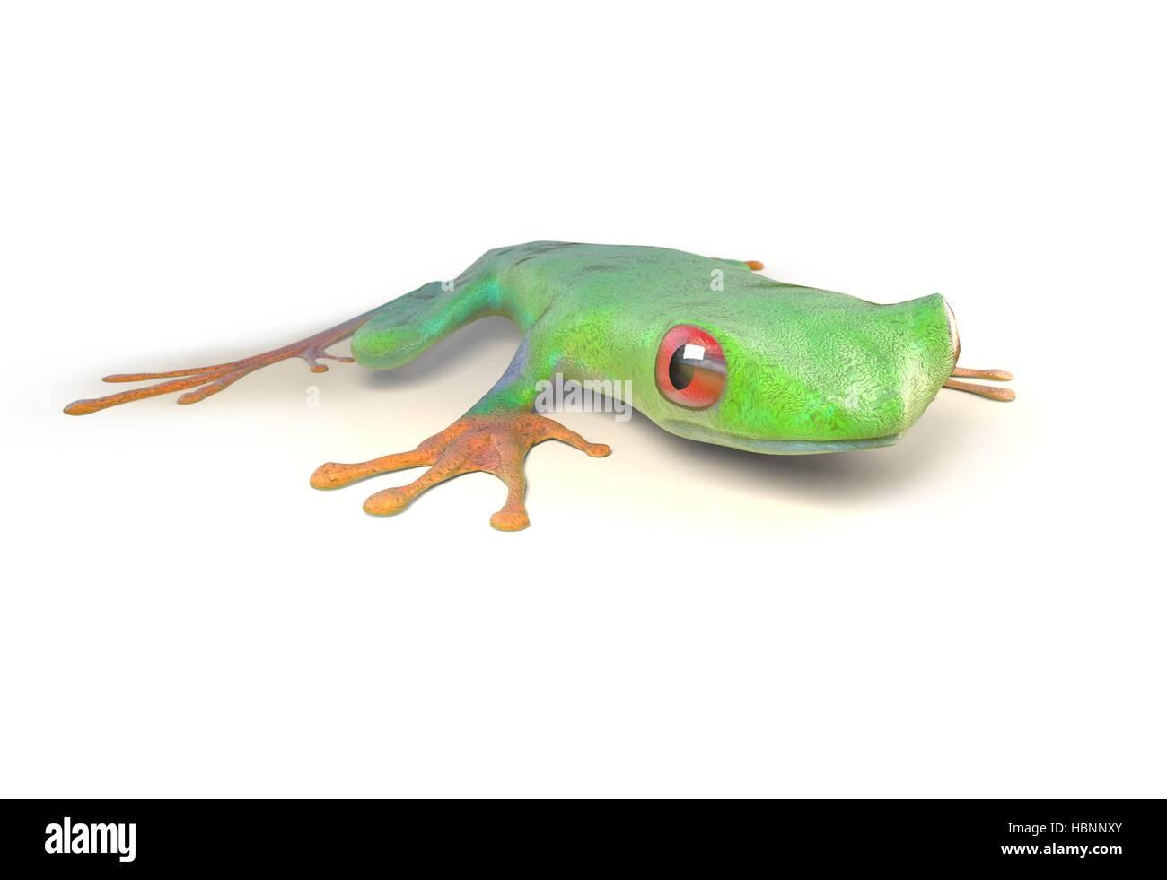 Cartoon Frog Imágenes De Stock & Cartoon Frog Fotos De Stock ...