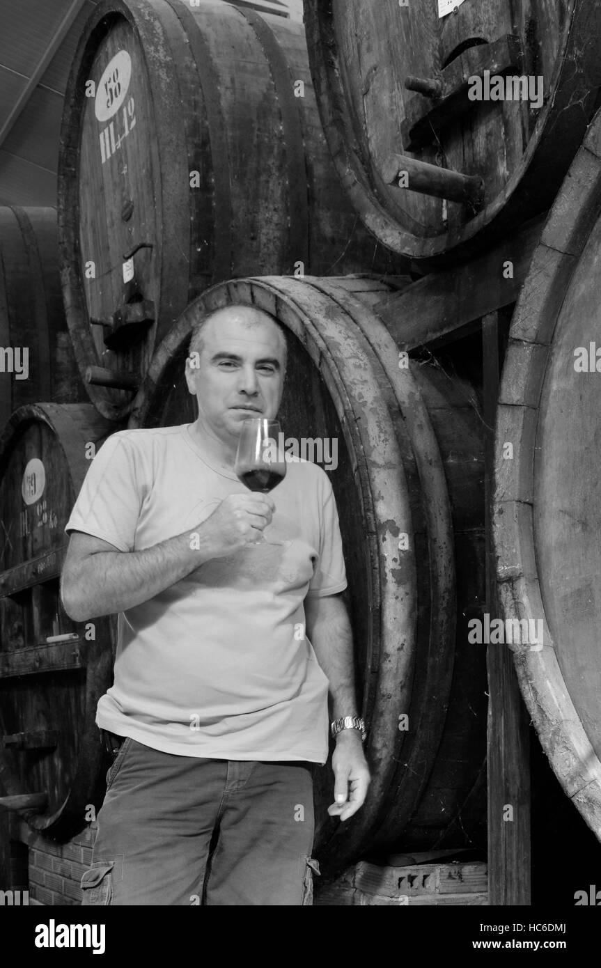 Hombre con un vaso de Vernaccia vid, Contini bodega, cabras, Sinis, Cerdeña, Italia Foto de stock