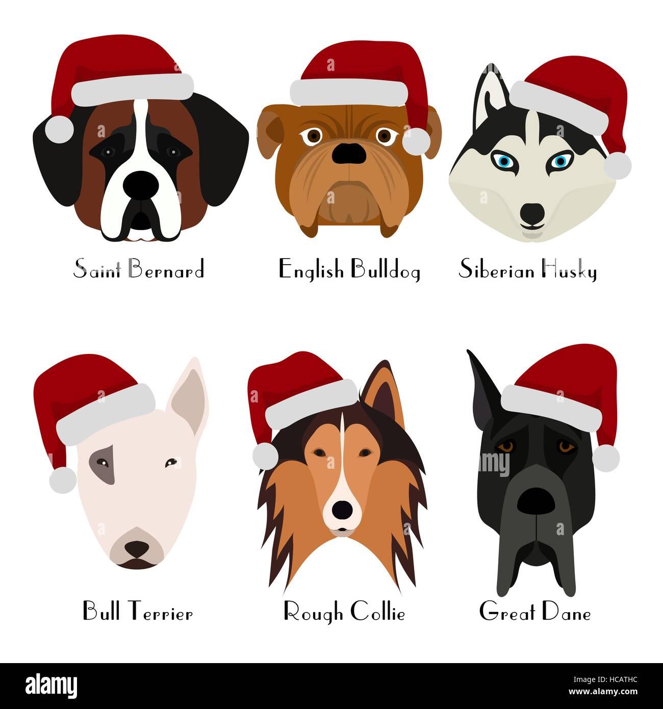 Conjunto De 6 Cabeza De Perro Diseño Plano Las Mascotas Cute