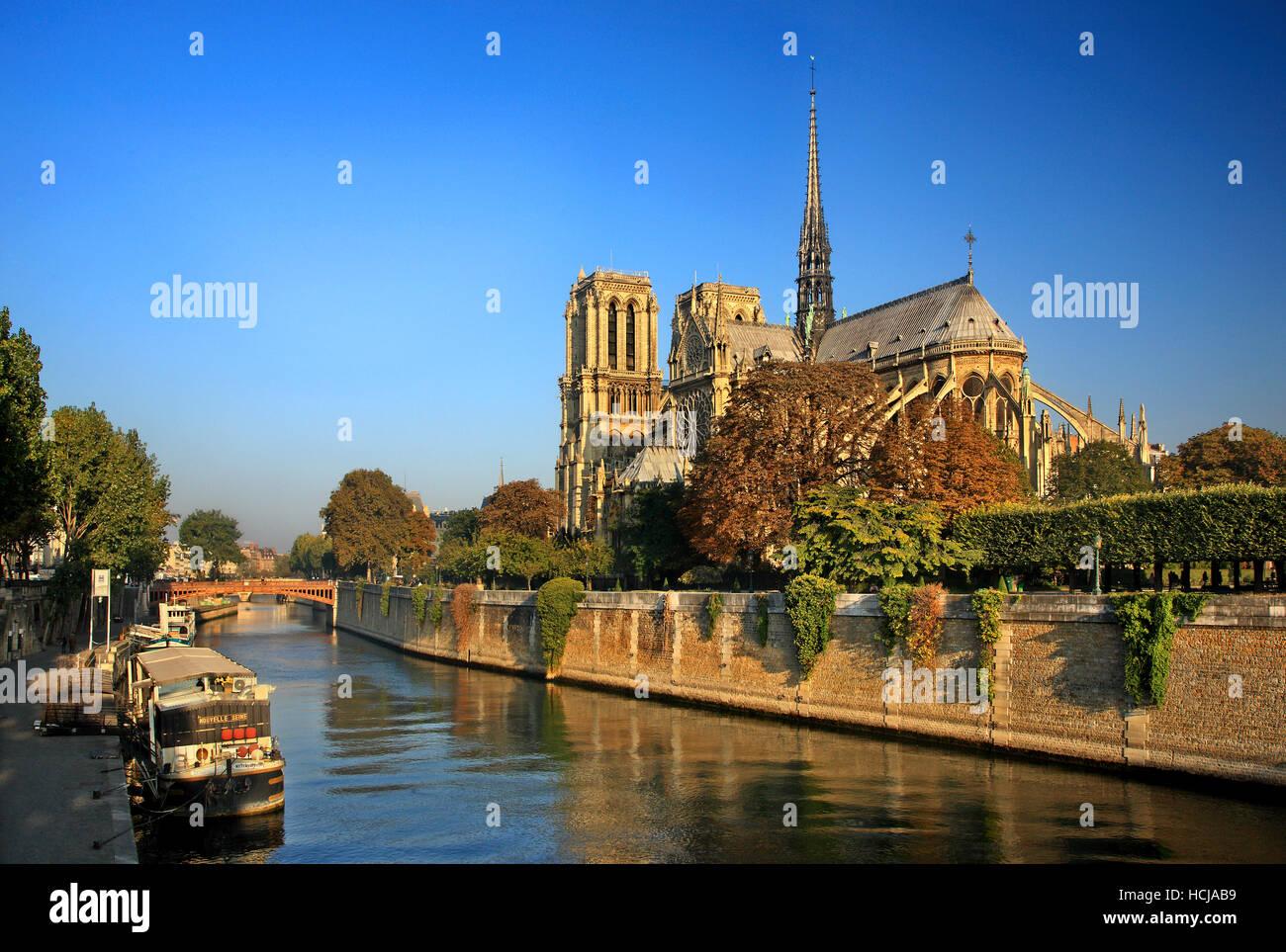 La Catedral de Notre Dame en Île de la Cité, una de las islas en el río Sena, París, Francia. Imagen De Stock