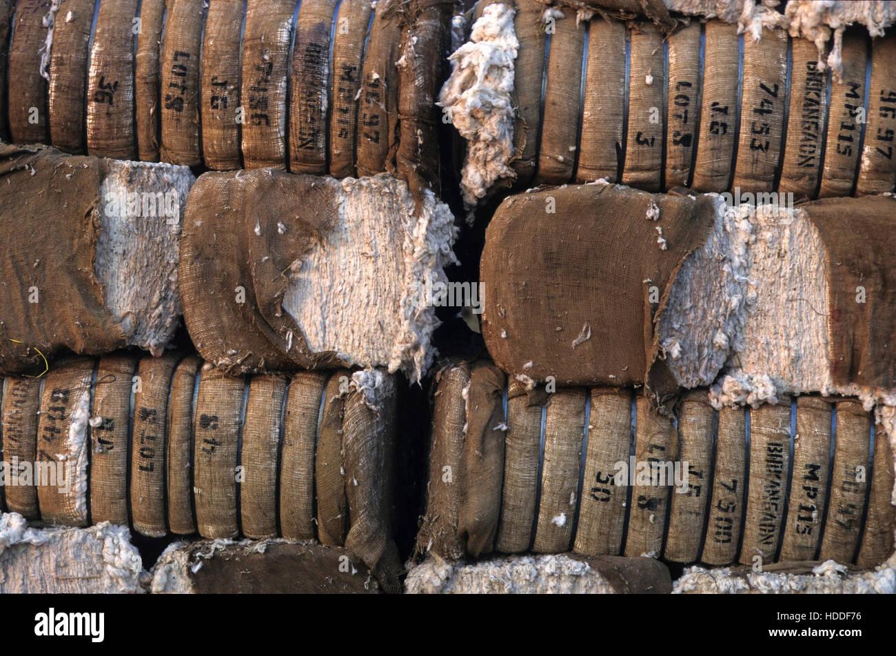 c92bdd37a La India, Madhya Pradesh, Kasrawad fábrica desmotadora de algodón, algodón  fardos envueltos en tela de yute · Joerg Boethling / Alamy Foto de stock