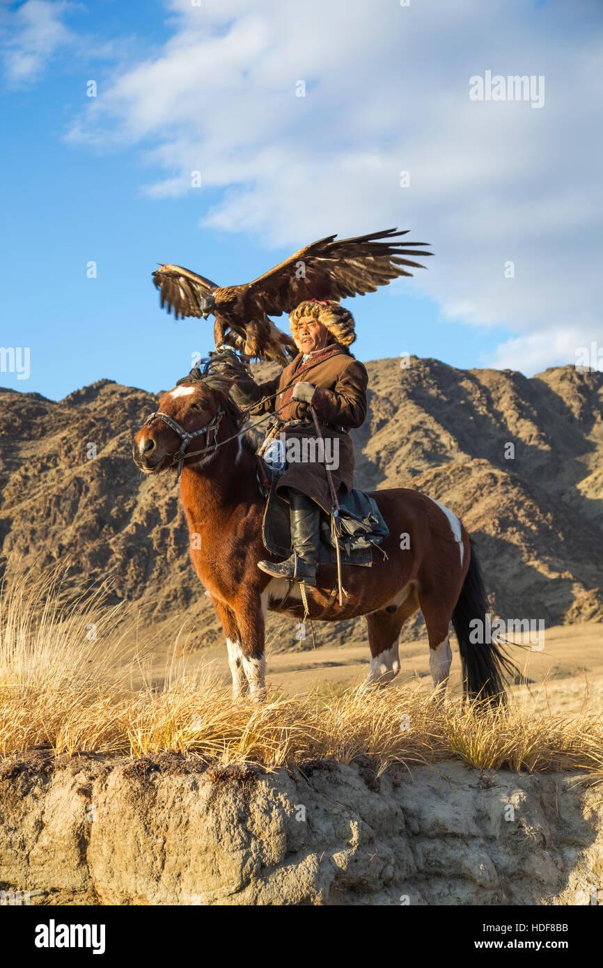 Bayan Ulgii, Mongolia, octubre 2nd, 2015: Old eagle cazador con Altai Golden Eagle en su caballo Imagen De Stock